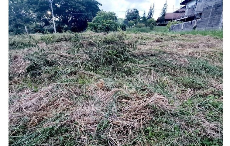 #BestLocation #BestProperties #BestBuy RESIDENTIAL LOT FOR SALE BEST in Orange G… -  property in Davao City